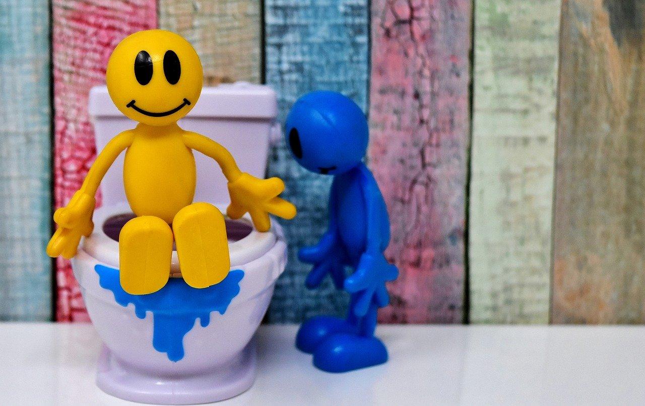 pompe de relevage wc et eaux usées